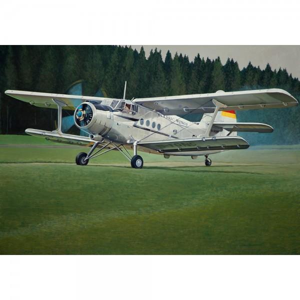AN-2, 140x100cm, Öl auf Leinwand